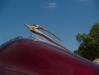 1955-impala